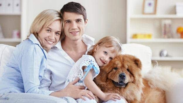 Wills & Trusts dog-young-family Direct Wills Brompton
